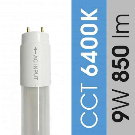 Świetlówka 9W / 6400K