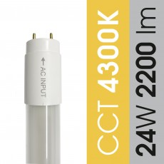 Świetlówka 24W / 4300K